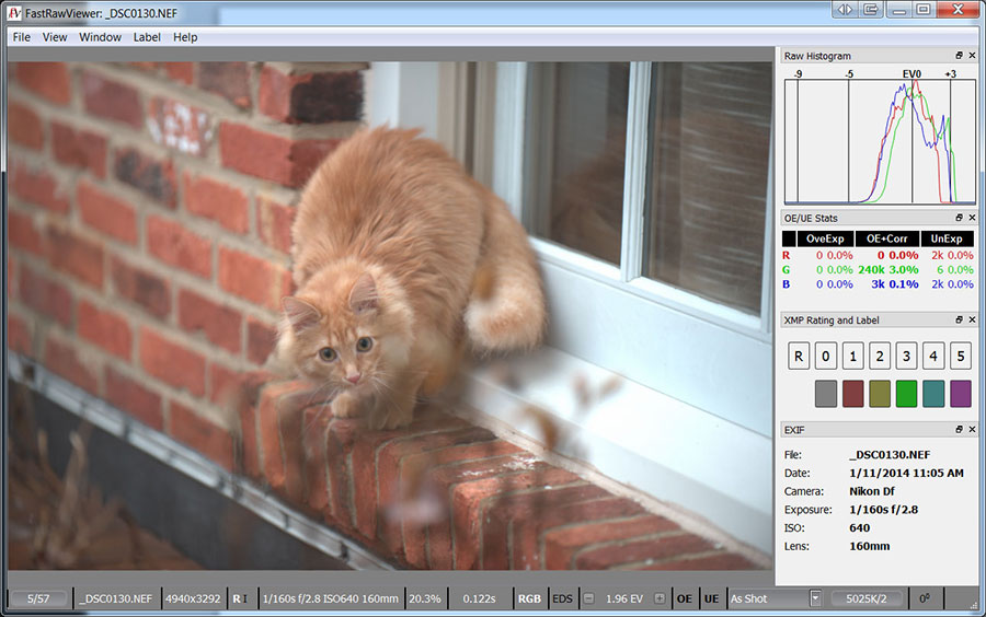 FastRawViewer for Windows (64-bit)